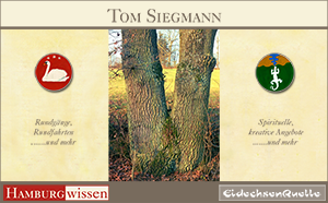 Bild der Referenz: Tom Siegmann - Kreativtrainer